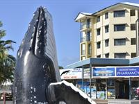 Whale Sculpture - Mantra Hervey Bay