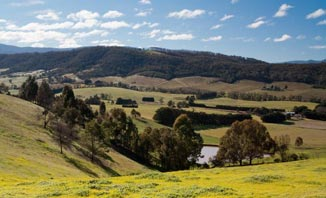 Enjoy a day trip to picturesque Healesville.
