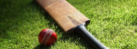 Cricket lights up Australia this summer