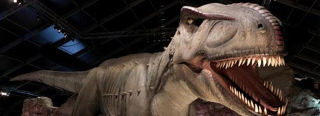 Take the kids to the National Dinosaur Museum