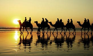 Enjoy the best of Broome's unique attractions.