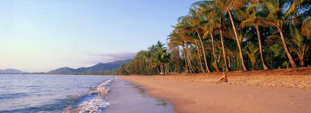 Enjoy the best of Palm Cove at Reef Feast 2013
