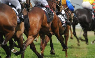 Catch all of the action when the Melbourne Cup returns.