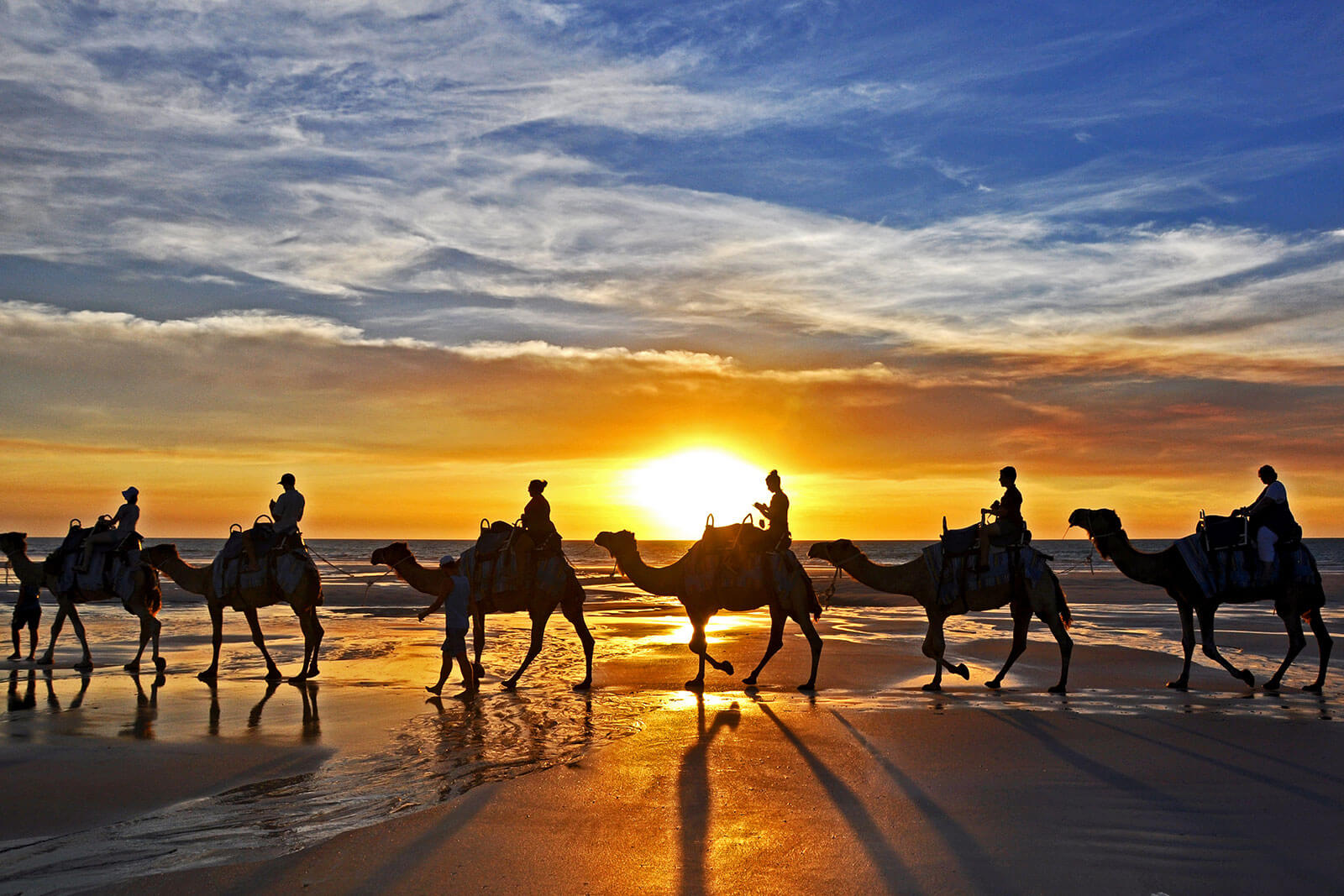 Camel Rides Broome