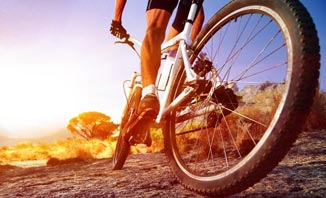 Have a cycling adventure with the Far North Wilderness Bike Tour.